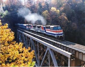 train rides in north carolina